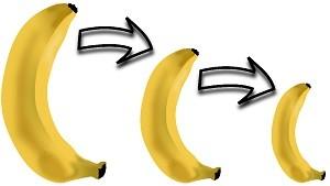 バナナ縮小