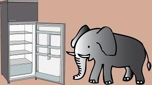 冷蔵庫にゾウ